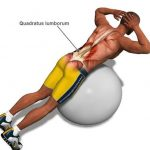 lumbar extension exercises can be very helpful